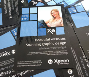Xenon Web Design - Poster Flyer Business Card Design Reading Berkshire