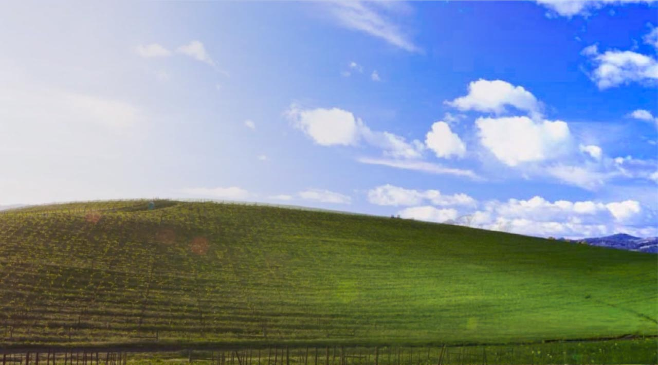 the story behind the famous bliss windows xp background